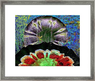 Take A Bath Framed Print by Lee M Plate