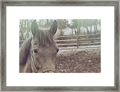 Take A Chance Framed Print by JAMART Photography