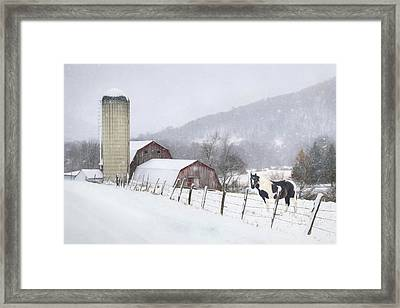 Take A Snow Day Framed Print by Lori Deiter