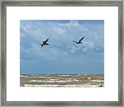 Framed Print featuring the photograph Take Flight  by Ken Frischkorn