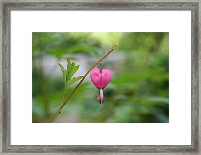 Framed Print featuring the digital art Take My Heart by Barbara S Nickerson