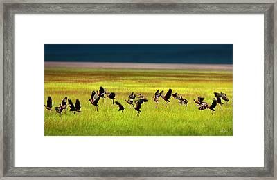 Take Off Framed Print by Leland D Howard