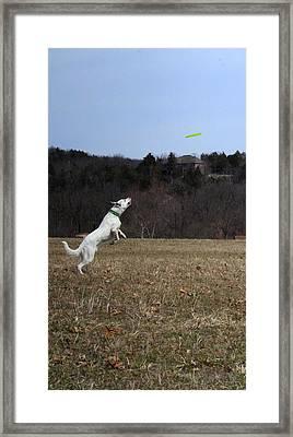 Take Off  Framed Print by Patricia Olson