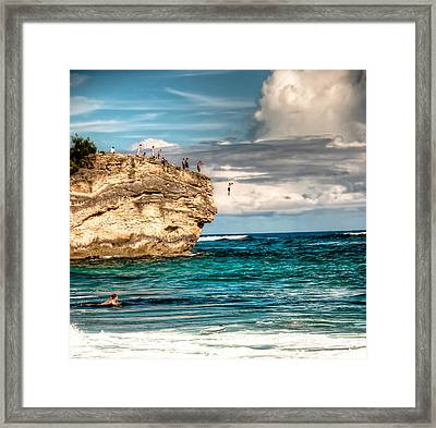 Take The Plunge Framed Print by Natasha Bishop