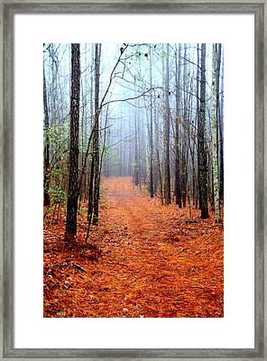 Taking A Stroll Framed Print