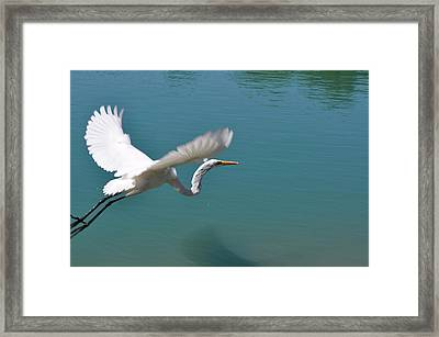 Takeoff Framed Print by Teresa Blanton