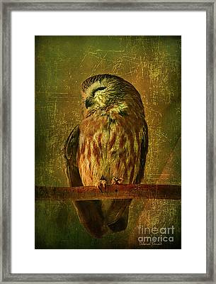 Taking A Snooze Framed Print