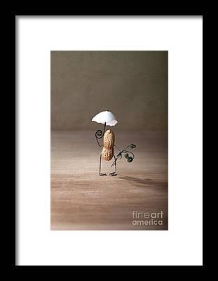 Eggshell Framed Prints