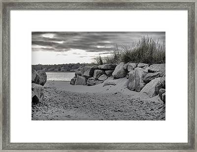 Taking A Walk At Fogland Framed Print by Andrew Pacheco