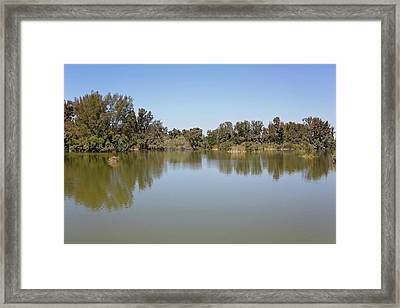 Framed Print featuring the photograph Taking A Walk by Kim Hojnacki