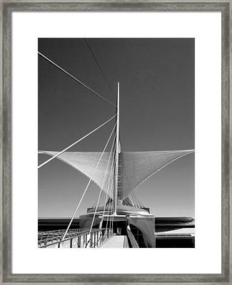 Taking Flight I Framed Print by Steven Ainsworth