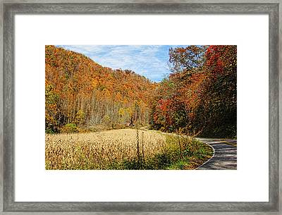 Taking Me Home Framed Print by HH Photography of Florida