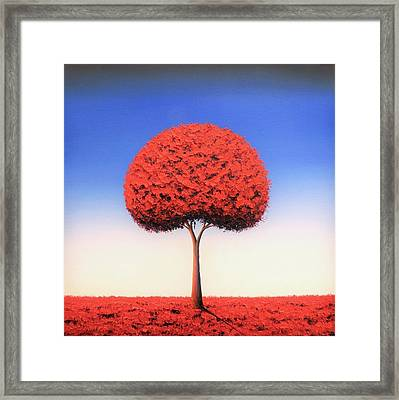 Taking The Day Framed Print by Rachel Bingaman