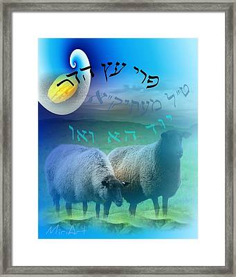 Framed Print featuring the photograph Tal by Miriam Shaw