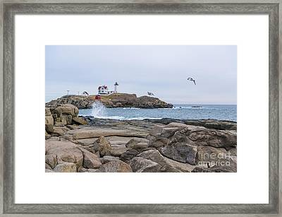 Tale Of Two Lighthouse Framed Print