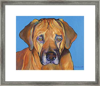 Talen  Framed Print by Pat Saunders-White