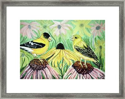 Talking Finches Framed Print by Ann Ingham