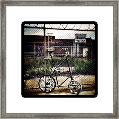 Tall Bike Framed Print by Natasha Marco