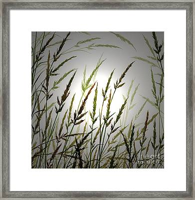 Framed Print featuring the digital art Tall Grass And Sunlight by James Williamson
