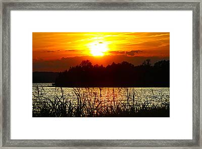 Tall Grass Sunset 2 Smith Mountain Lake Framed Print