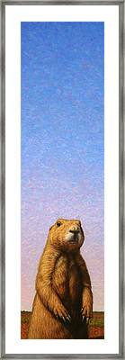 Tall Prairie Dog Framed Print by James W Johnson