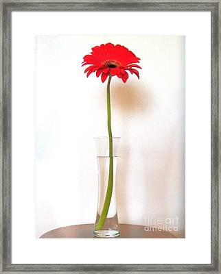 Tall Red Framed Print by Marsha Heiken