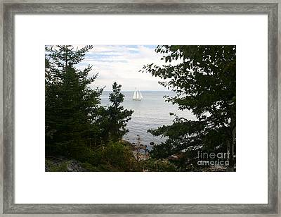 Tall Ship Framed Print by Dennis Curry