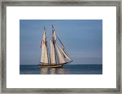 Tall Ship Pride Of Baltimore II Framed Print