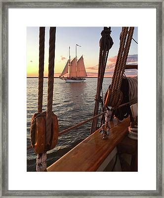 Tall Ship Sunset Sail Framed Print by David T Wilkinson