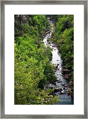 Tallulah Gorge-65 Framed Print
