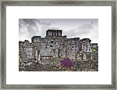 Talum Ruins 6 Framed Print by Douglas Barnett