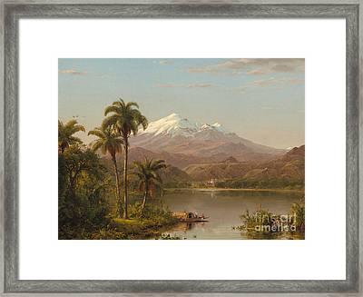 Tamaca Palms Framed Print