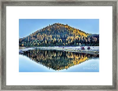 Tamarack Glow Idaho Landscape Art By Kaylyn Franks Framed Print