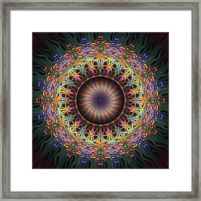 Tambourine Framed Print