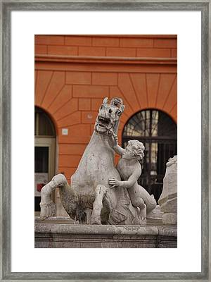 Taming The Sea-horse Framed Print by JAMART Photography