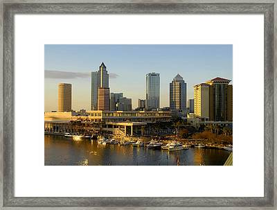 Tampa Bay And Gasparilla Framed Print by David Lee Thompson