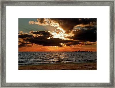 Tampa Bay Sunset Framed Print by Christopher Holmes