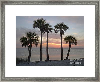 Tampa Bay Sunset Framed Print by Gail Kent