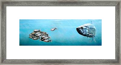 Tampa Bay Tarpon Framed Print by Joan Garcia
