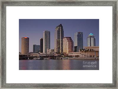 Tampa Florida  Framed Print by David Lee Thompson