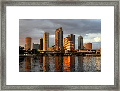 Tampa In Reflection Framed Print by David Lee Thompson