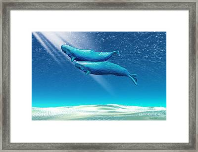 Tandem Framed Print by Corey Ford