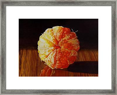 Tangerine Framed Print by Catherine G McElroy