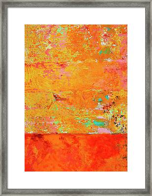 Tangerine Dream Framed Print by Skip Hunt