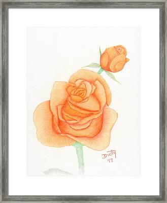 Tangerine Gold Framed Print