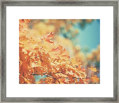 Tangerine Leaves And Turquoise Skies Framed Print by Lisa Russo