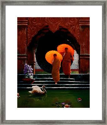 Tangerine Parasols Framed Print by Stephen Lucas