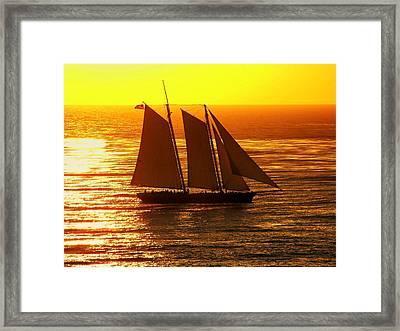 Tangerine Sails Framed Print by Karen Wiles
