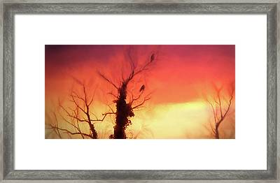 Tangerine Sunset Slice Framed Print by Sharon Lisa Clarke