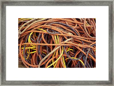 Tangle Framed Print by Brent L Ander